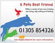A PETS BEST FRIEND offers pet sitting / walking services
