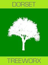 Dorchester & Weymouth Tree Surgeons & Hedge Services - Dorset Treeworx